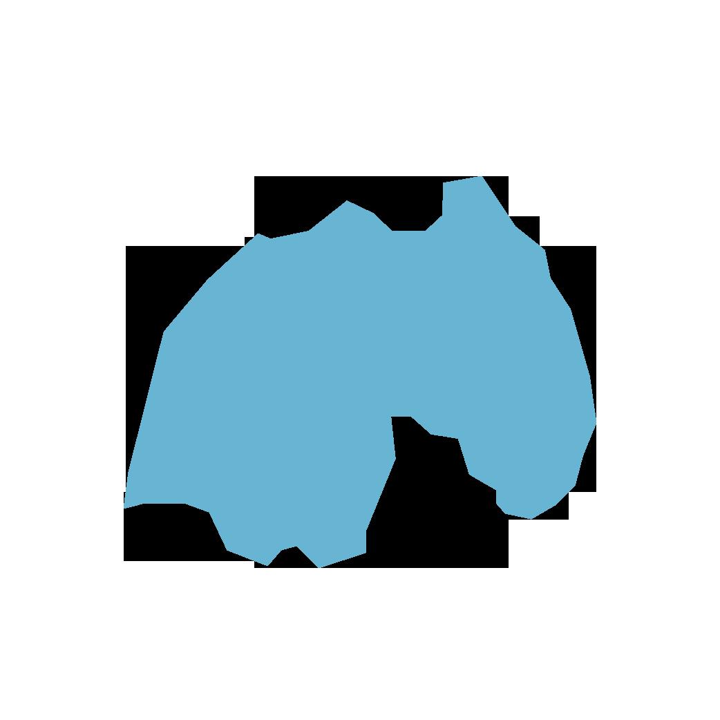 Icon illustration of Rwanda
