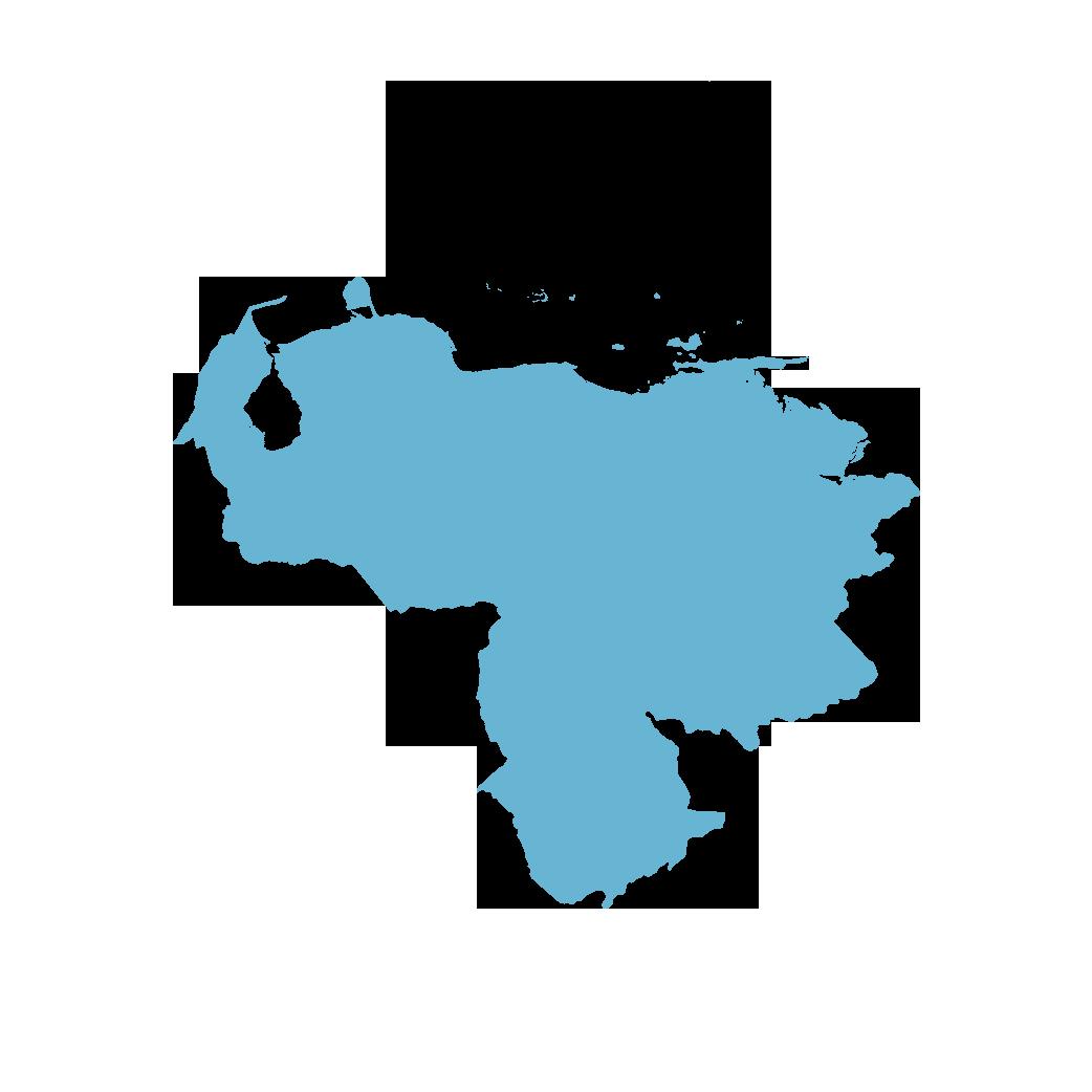 Icon illustration of Venezuela