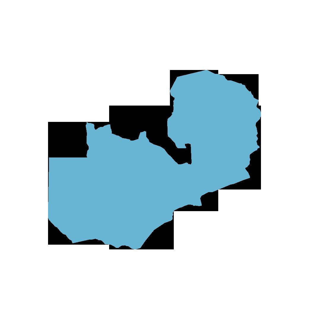 Icon illustration of Zambia