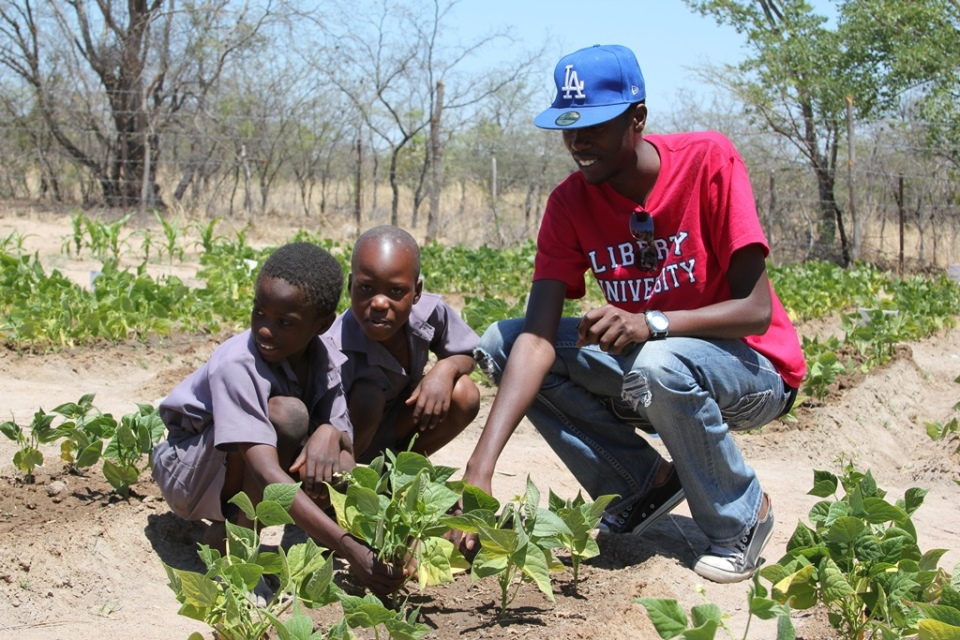 clean water Zimbabwe