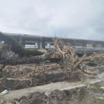 Typhoon Haiyan Philippines 16