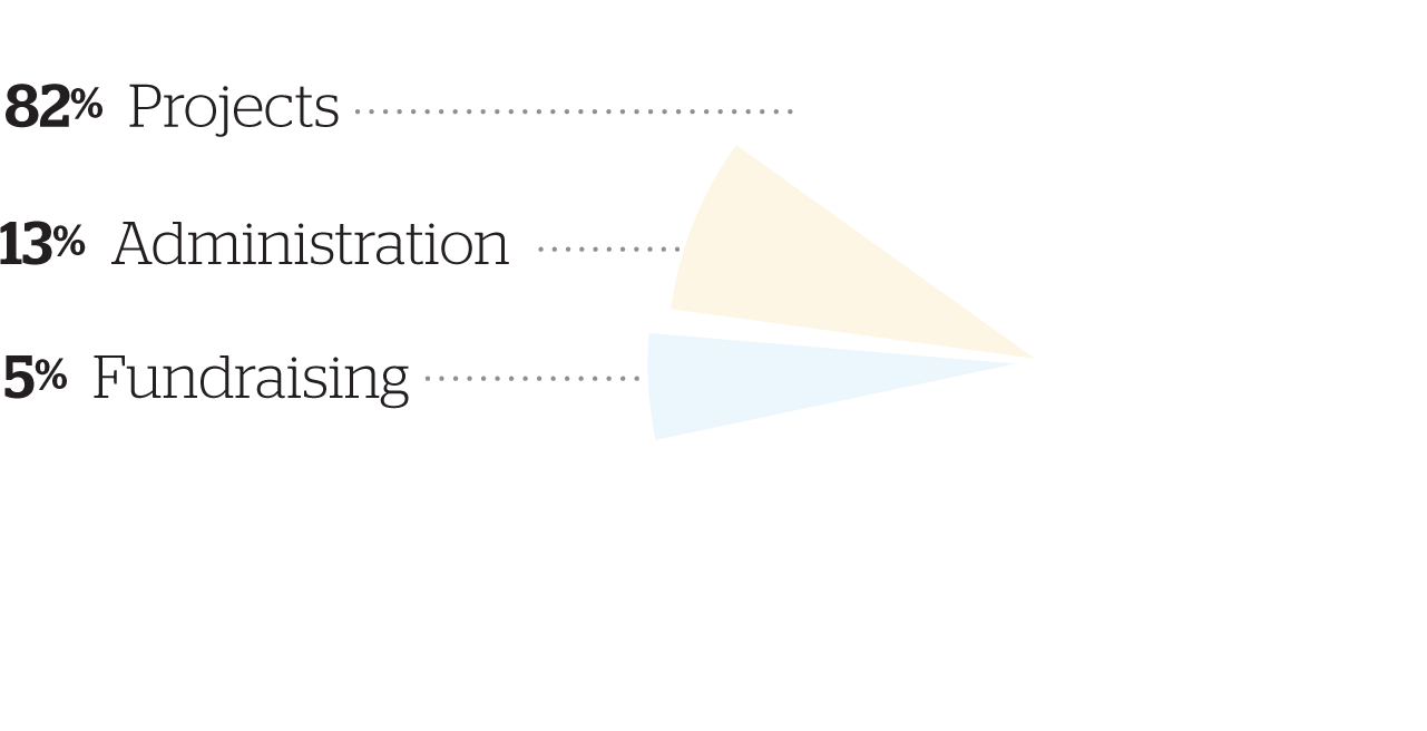 WH 2013 Financials Pie Chart