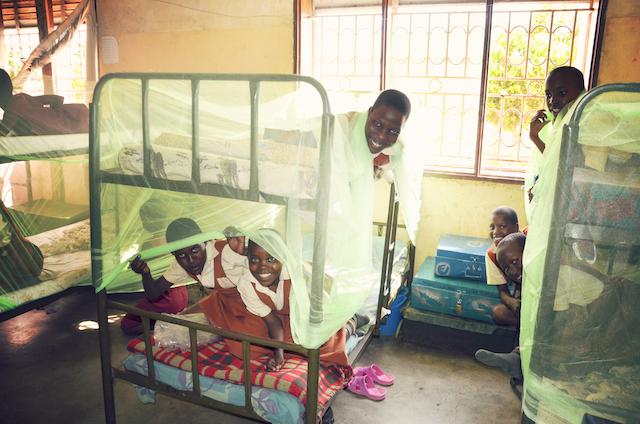 Mosquito Nets - World Help