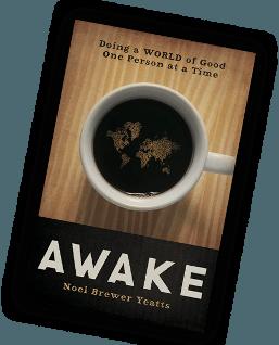 AWAKE by Noel Yeatts
