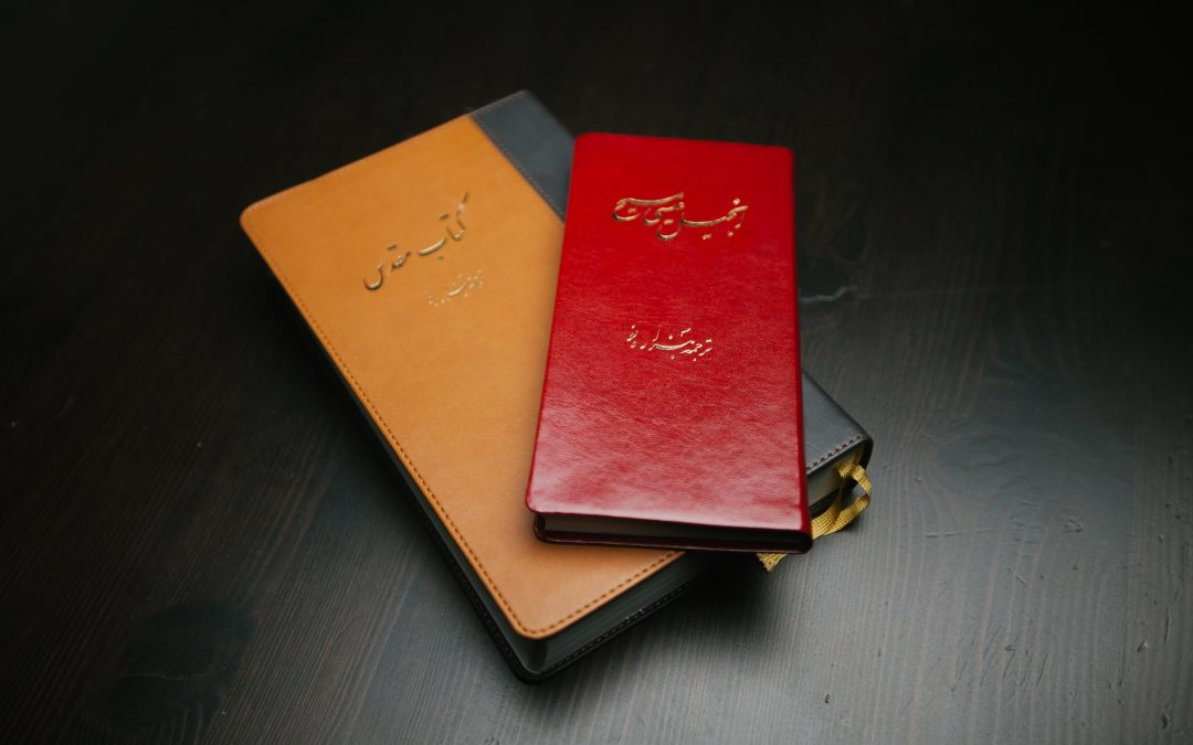 Bibles for All Ambassadors get Bibles into Iran